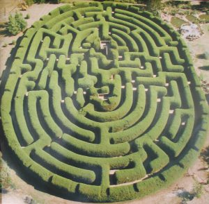 Israeli Real estate maze,